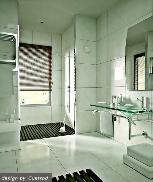 project-bathroom11
