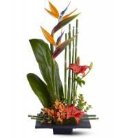 gift-flowers13