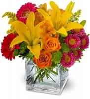 gift-flowers19