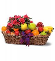 gift-flowers7