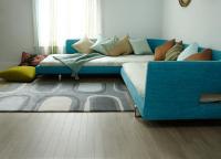 rugs-ideas22