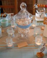table-set-for-sweet-baby8