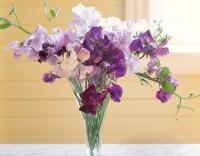 vase-for-flowers19