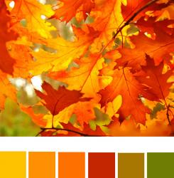 fall-palette1