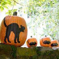 halloween-pumpkin6