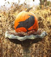 halloween-pumpkin7