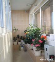 plant-composition12