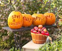 pumpkin-decor-carving11