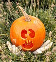 pumpkin-decor-carving13