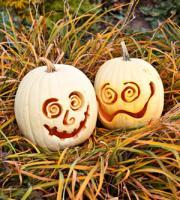 pumpkin-decor-carving14
