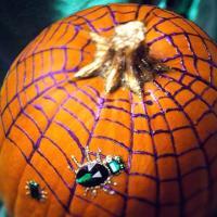 pumpkin-decor-paint-glitter8
