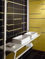 stripe-in-bathroom10