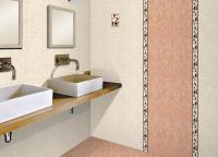 stripe-in-bathroom6