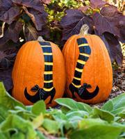 pumpkin-for-kids6