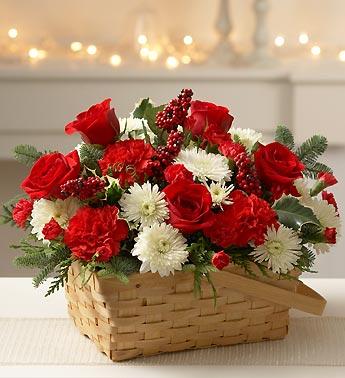 winter-flowers15