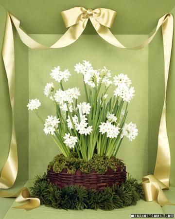 winter-flowers27