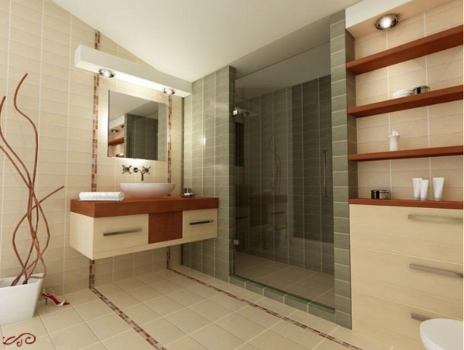 project-bathroom-constructions1