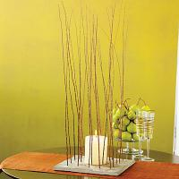 eco-style-ideas-branches-n-leaves2