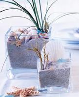 eco-style-ideas-seashell3
