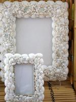 eco-style-ideas-seashell6