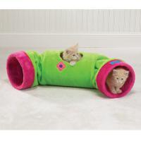 pets-furniture-cats12