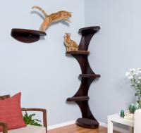 pets-furniture-cats16