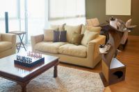 pets-furniture-cats29
