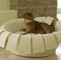 pets-furniture-cats3