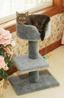 pets-furniture-cats33