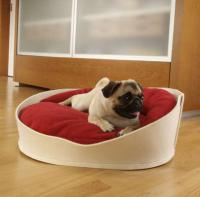 pets-furniture-dogs3