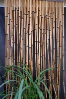 eco-style-texture-bamboo2