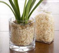 glass-vase-decor-ideas7
