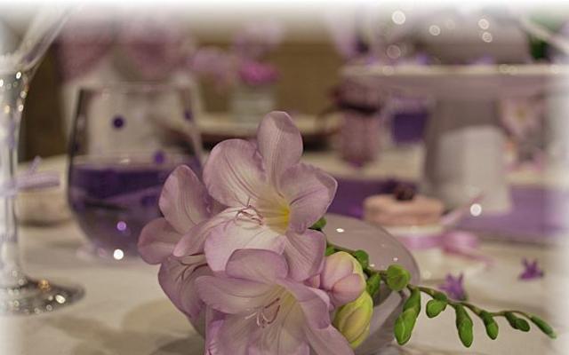 table-set-wild-fresia4