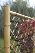bamboo-decor-ideas-outdoor2