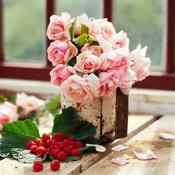 creative-rose-composition-in-pink5