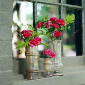 creative-rose-composition-vase-tips4