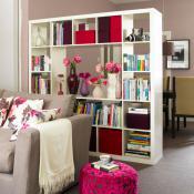 divide-and-dominate-shelves2