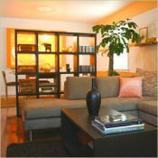 divide-and-dominate-shelves8