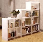 divide-and-dominate-shelves9
