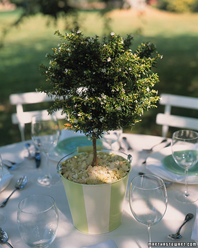 spring-picnic-ideas-marta9