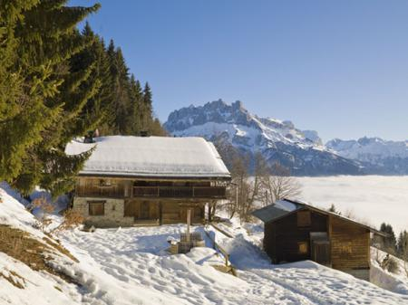 country-houses-in-chalet-style3