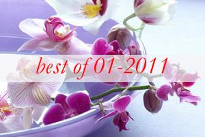best10-wonderful-orchids-ideas