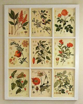 botanical-print-ideas-diy