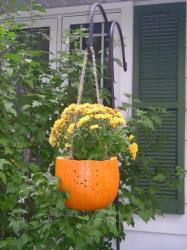 pumpkin-as-vase-creative-ideas8