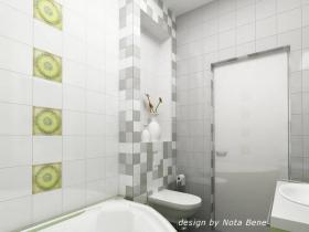 project-bathroom-constructions15