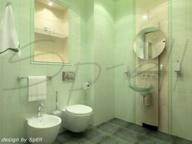 project-bathroom-constructions24