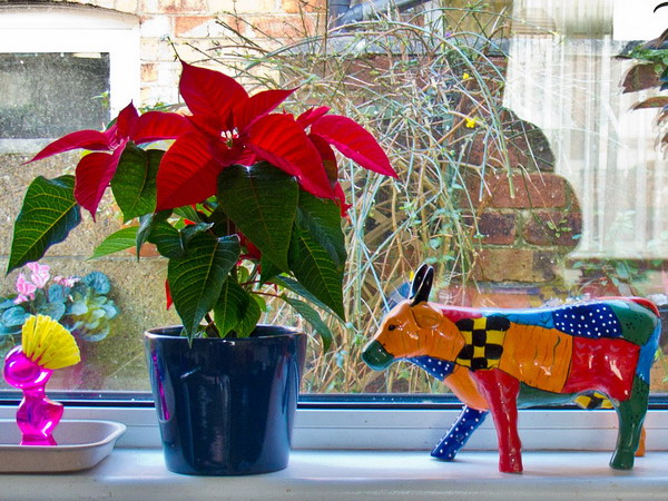 windowsill-decorating-ideas