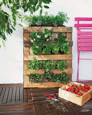 diy-vertical-garden2