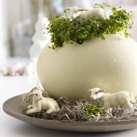 flowers-in-egg-shell-ideas8