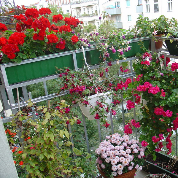 flowers-on-balcony-part1